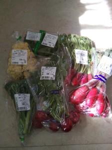 潟の店 野菜